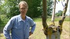 Lon Rombough: Grafting Fruit Trees (video)