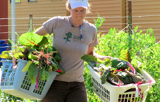 Urban Farmer in the City- Amanda Morse