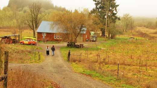 Dustin and Jennifer Olsen, The Mushoomery In Lebanon, Oregon